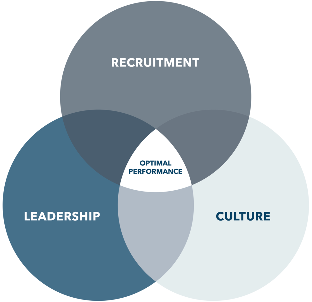 What We Do - Snow Consulting specializes in the employee life cycle. From recruitment through final transition, we ensure this process runs smoothly.