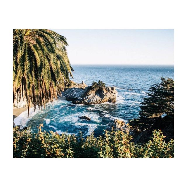 🌴 Hey Lovelies 👨👧 This year's 91st photo is by @jackrmoriarty 🍉 #hippomag #somewheremagazine 📸