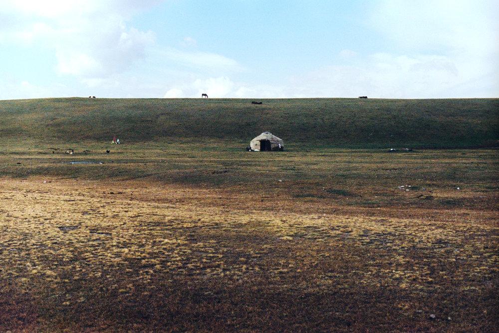 A little yurt in the meadow.
