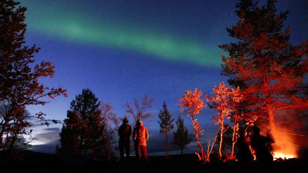 Elokuun lopusta alkaen voi öisin nähdä taas revontulia.