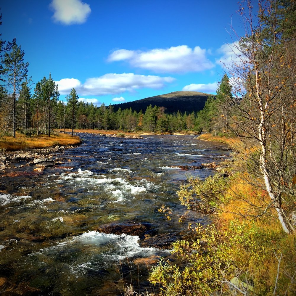Joki ja tunturi.jpg
