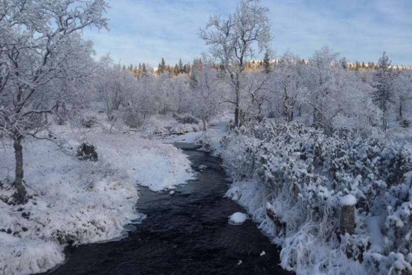 Talvinen joki.jpg
