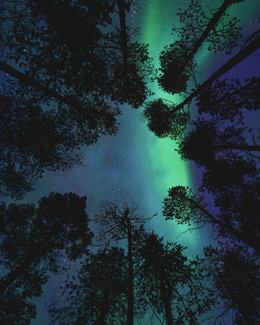 Joskus on parempi vain maata lumihangessa ja katsoa taivaalle.