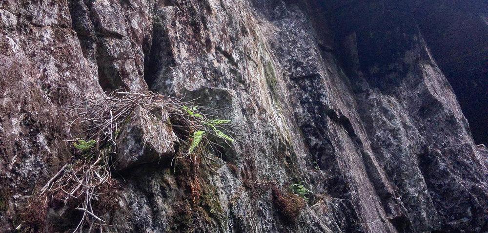 Mikä lie muinainen kansa tehnyt pesänsä tähänkin kallioon?