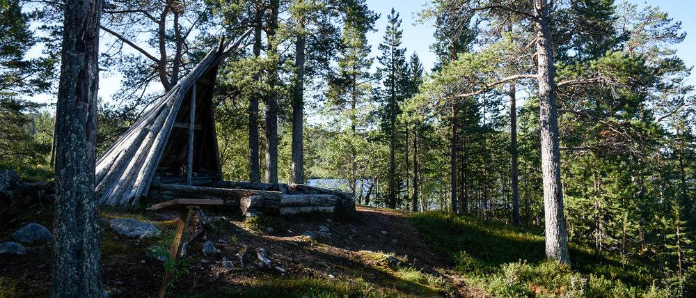 Muddusjärven puulaavu.