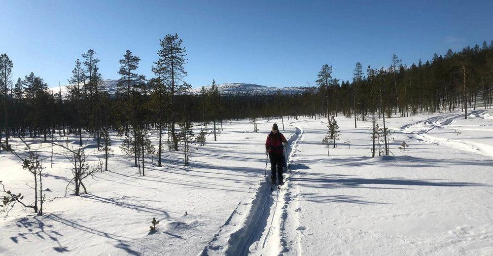 Valmiilla uralla on helpompi hiihtää.