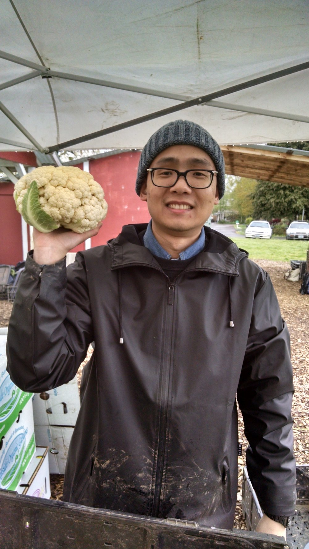 UO Environmental Studies intern Hao with overwintered cauliflower