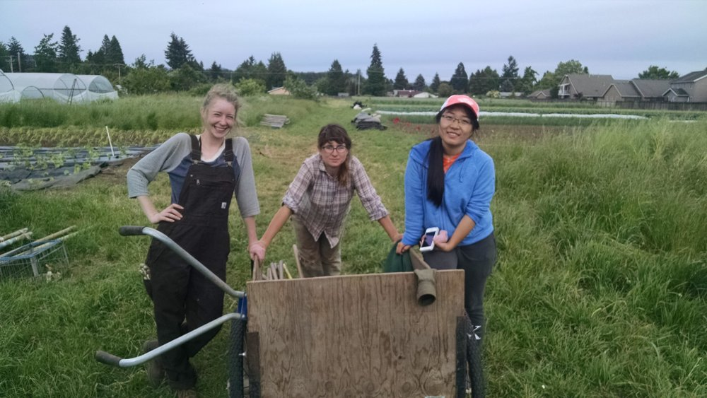 Alex, Sophie, and Mo after a day of weeding: strong farming women