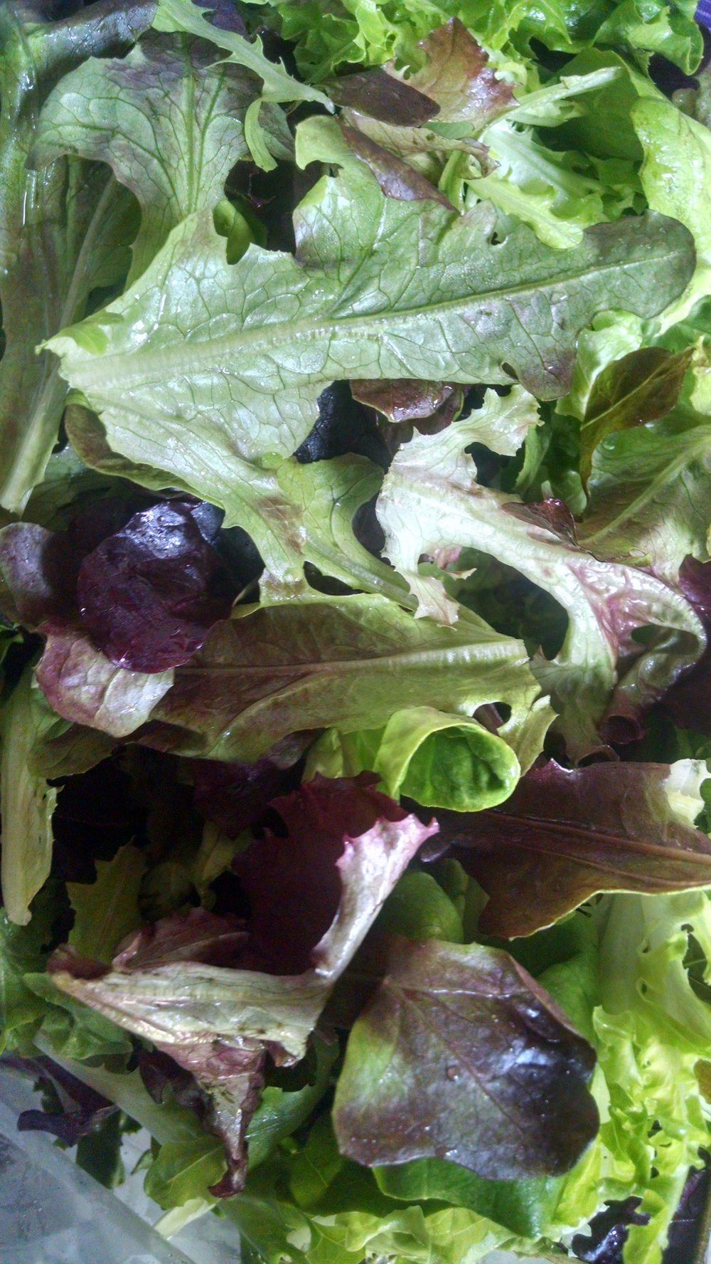 Ready to eat salad mix