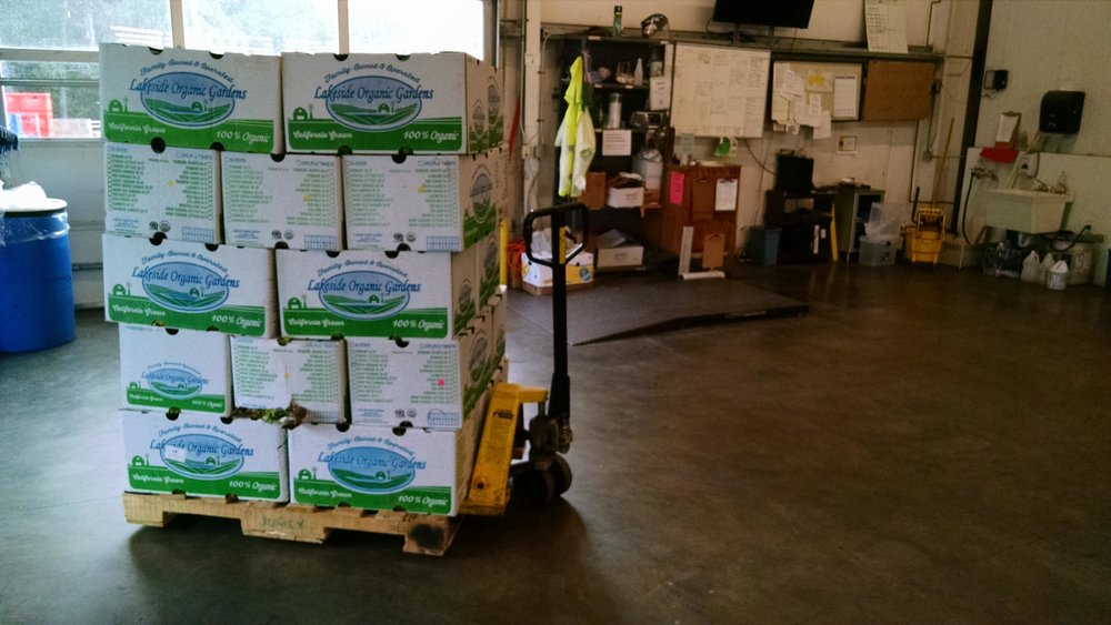 Weighing the well-stacked pallet of lettuce at the food bank