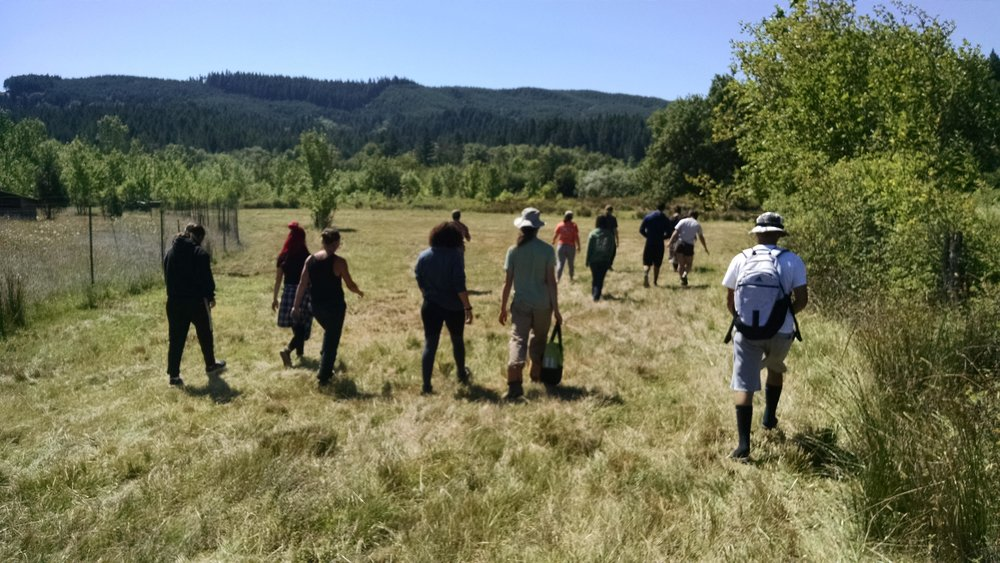 Walking out to pasture past Andy's biodynamic vegetable plots