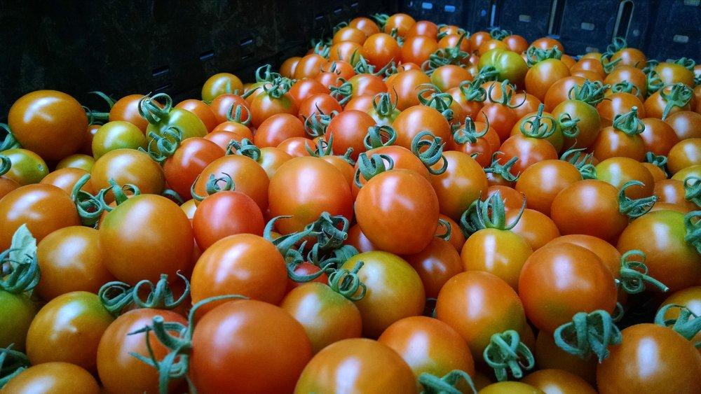 Orange Zinger cherries