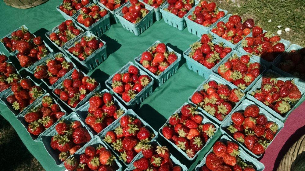Strawberries still bumpin'