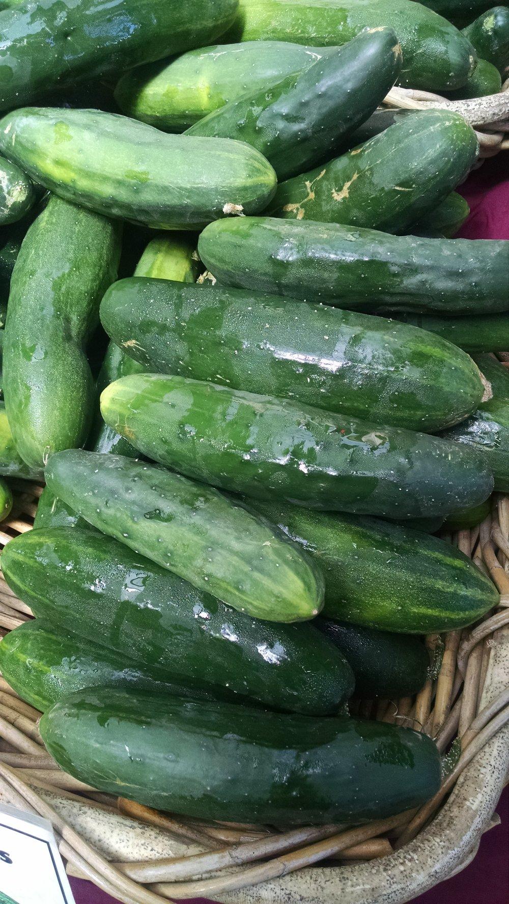 Cucumbers finally flowing