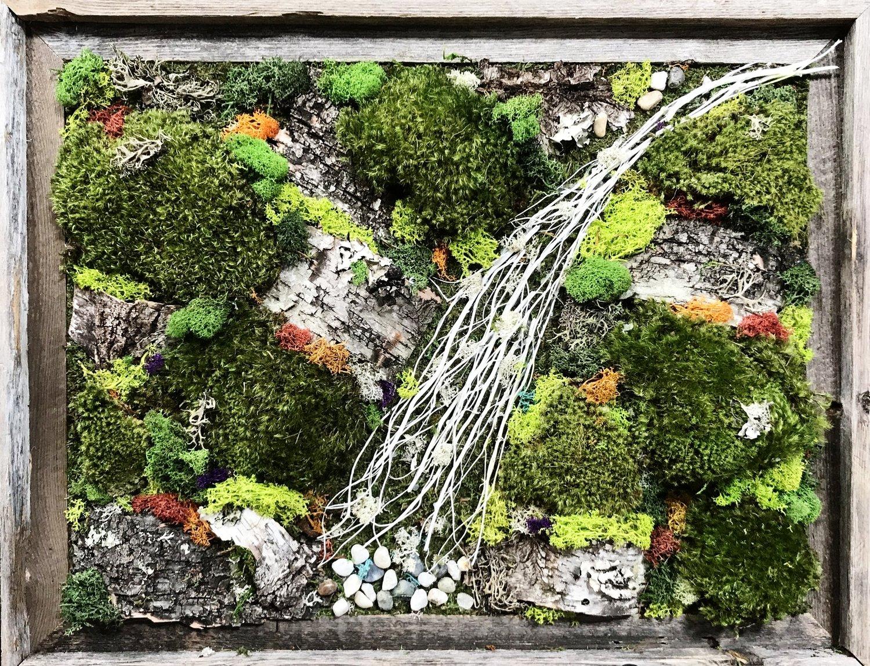 Living Wall Art Exotic Plants Sacramento