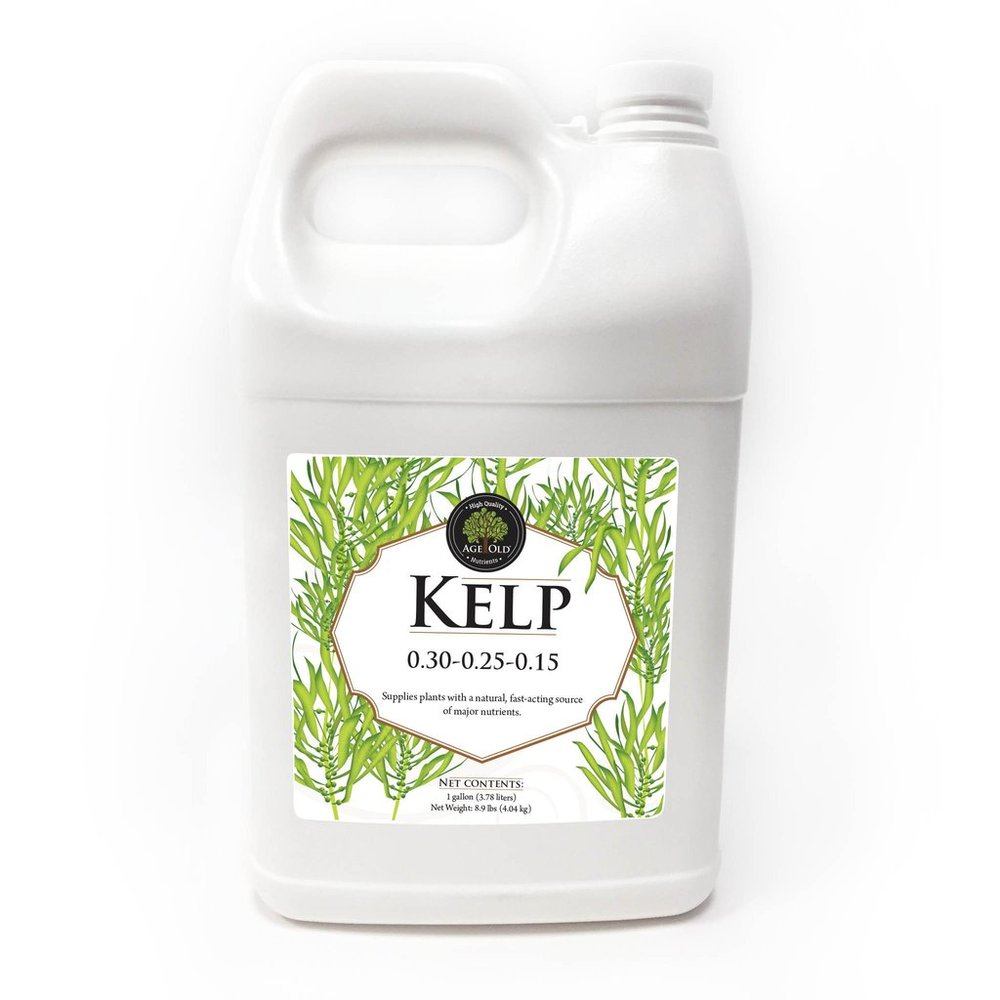 kelp fertilizer.jpg