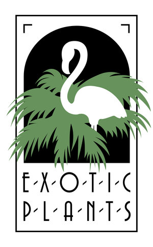Exotic Plants Sacramento
