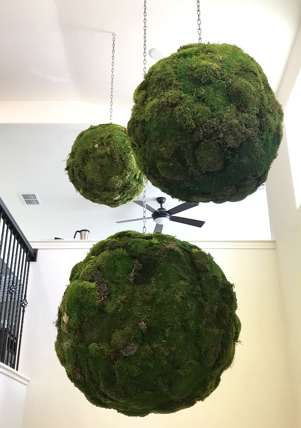 3mossballs.jpg