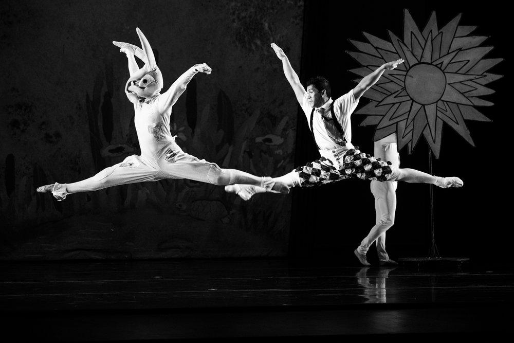 velveteen-rabbit-odc-dance.jpg