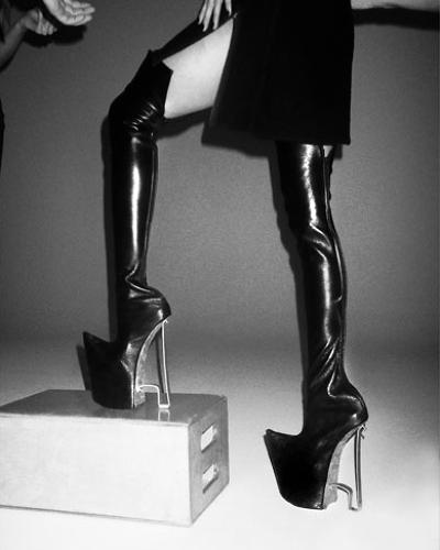 Rhino Shoes -