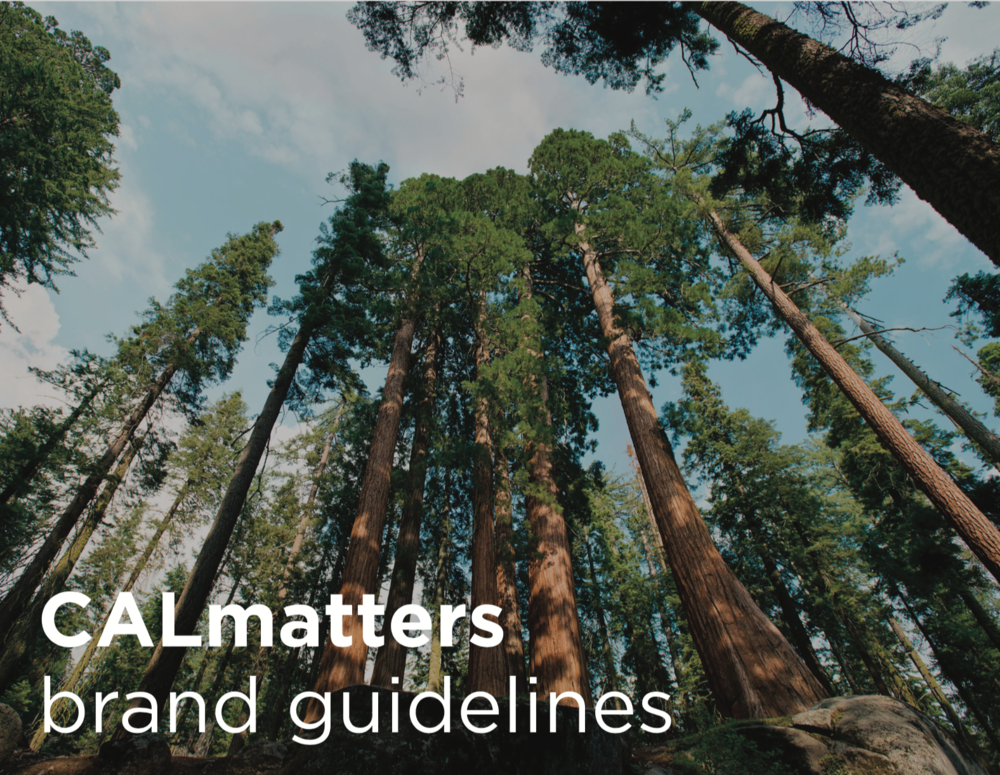 Front page of the brand guidelines. The rest is for CALmatters!