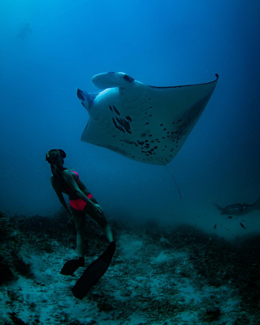 Woman_Swimming_Manta_Ray_Maldives_SarahLeePhoto.jpg