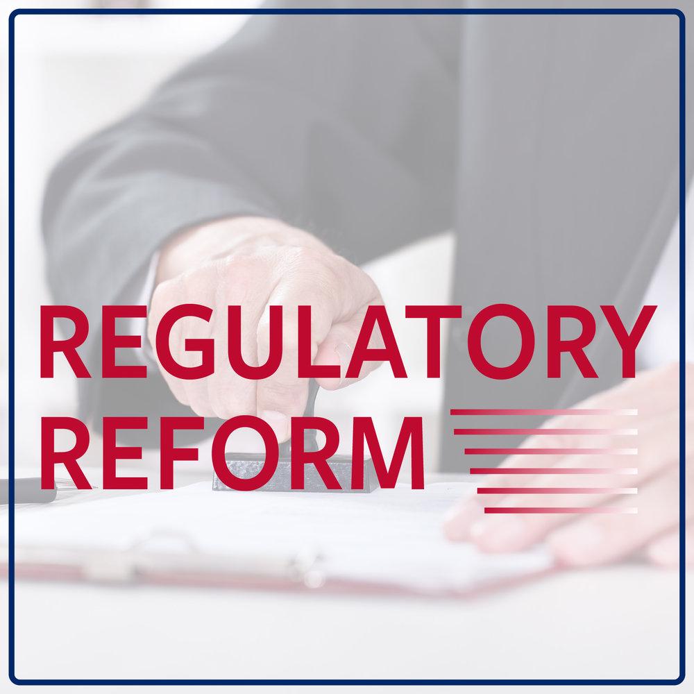 reg reform thumbnail@3x-100.jpg