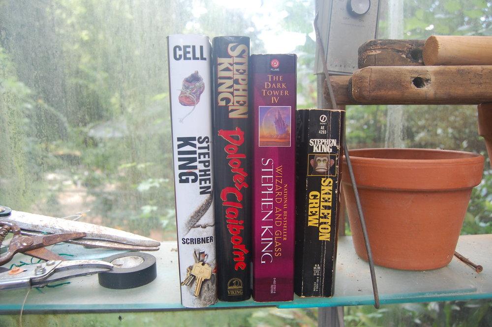 Stephen King Book Shelfie Vertical 3