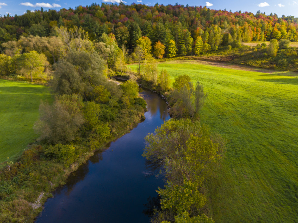 The natural beauty of this creek runs directly through our 156 acres at Vermont Swiss and Bloom Farm