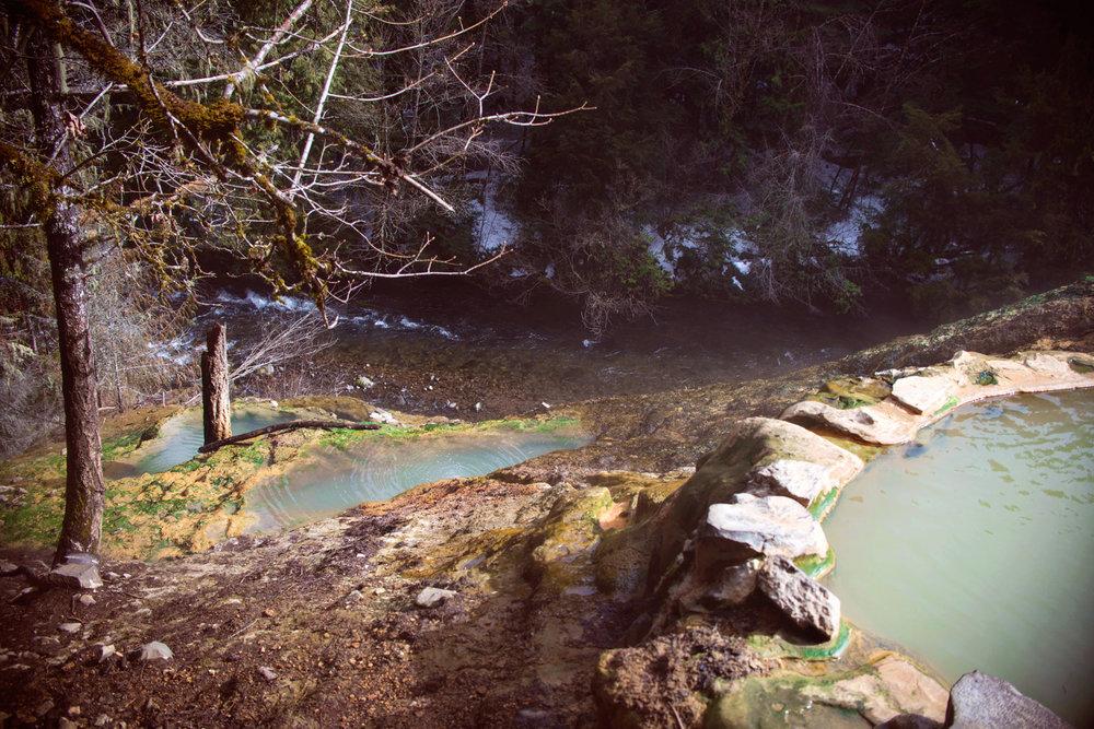 Springs-3.jpg
