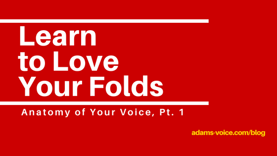 Learn to Love Your Folds
