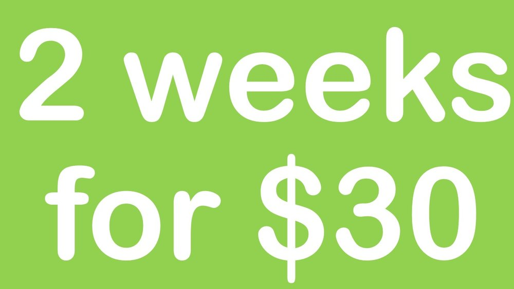 $30.00 - first timers only - We believe you need more time to really get to know a new gym. Trying to cram everything into your 7 day trial never works, so here at NRG, we have opted to give our new members a Two Week trial.Take up our $30 for two weeks and get a good feel for how many times you will come each week, what session times you prefer or have the time to work through your own individual program that we will set up for you.