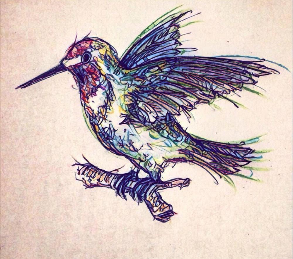 "Untitled ""Hummingbird"" . Paper. Pen and color pencil. Prisma app. September 2016."