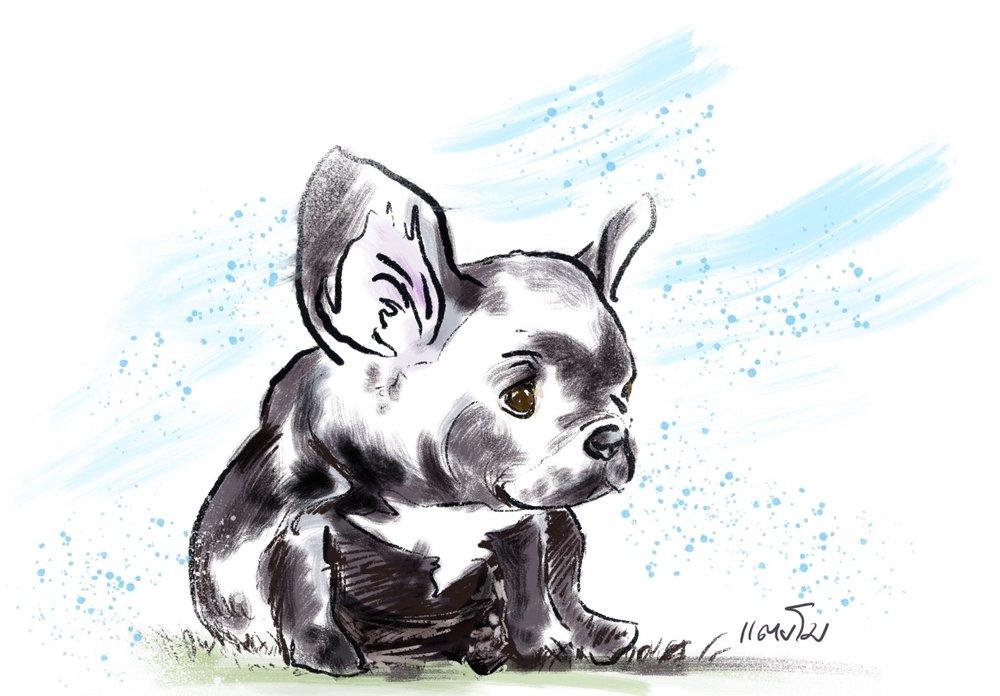 "Untitled ""Puppy"". Procreate app on iPad Pro. October 2018."