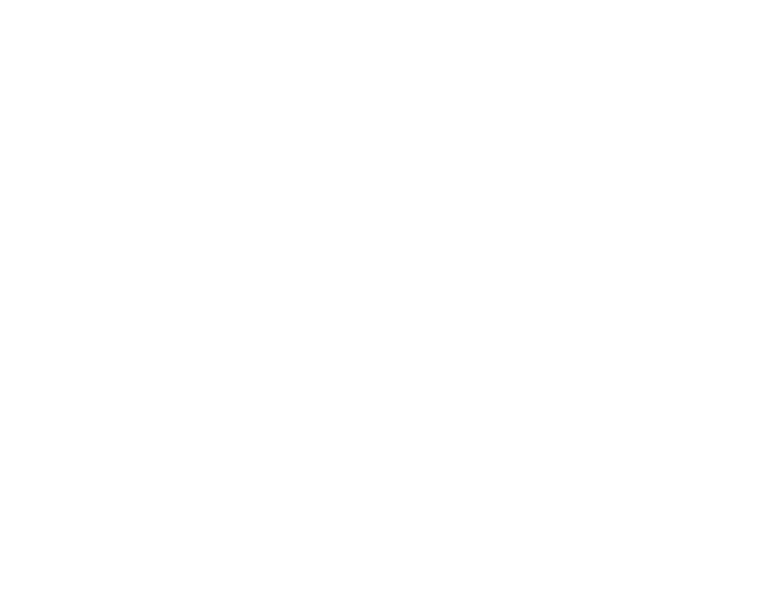 Brisbane Festoon Hire