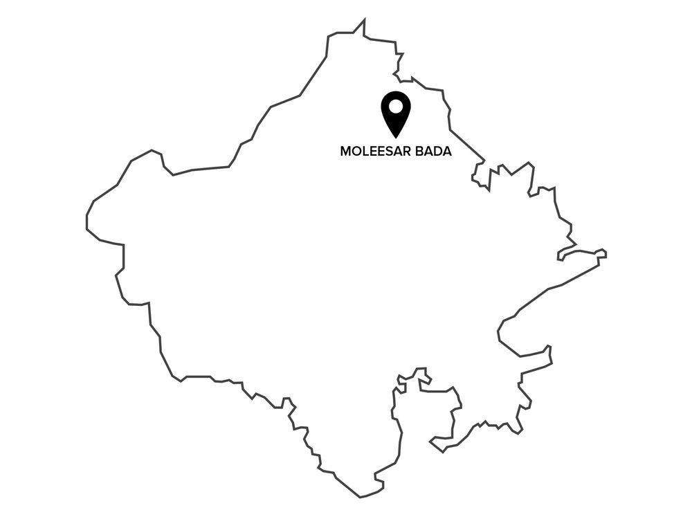 Profile  - Community - Bhopa BhopiSpecialization - VocalVillage - Moleesar BadaTehsil & District - ChuruRegion - Shekhawati