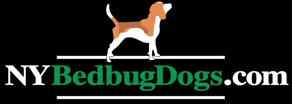 Captivating New York Bedbug Dogs   NYC Bed Bug Exterminator | Bed Bug Exterminator NYC,  Brooklyn | NY Bed Bug Dogs NYC