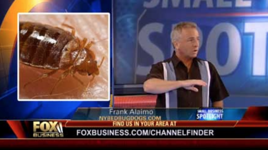 Ny bed bug dogs featured on TV, Fox Business News as NYC bed bug expert.