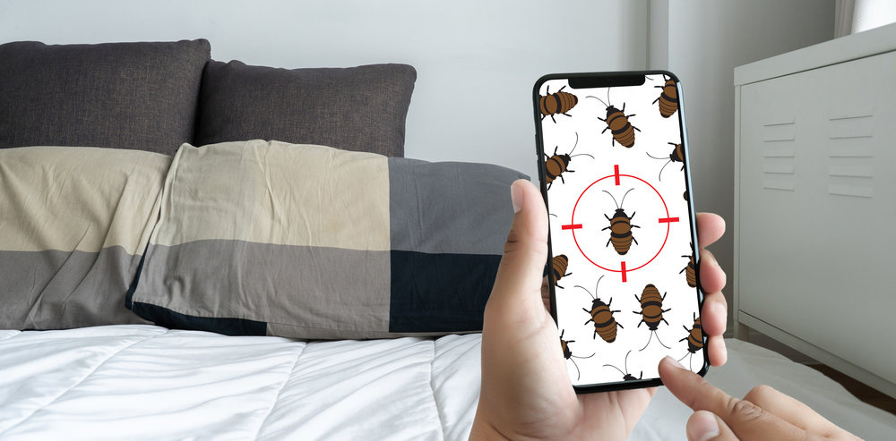 Bed Bug Company's Tips for Avoiding Bed Bugs in NYC