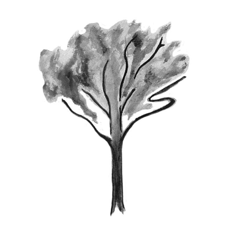 TREE+FINAL.jpg