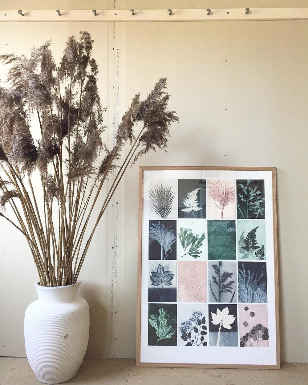 16 prints of A5 size