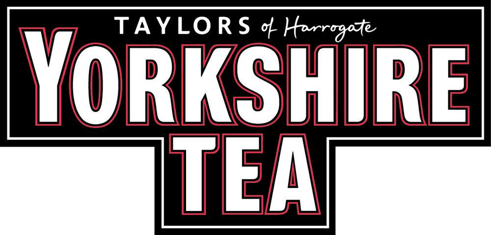 2013 YT logo.jpg