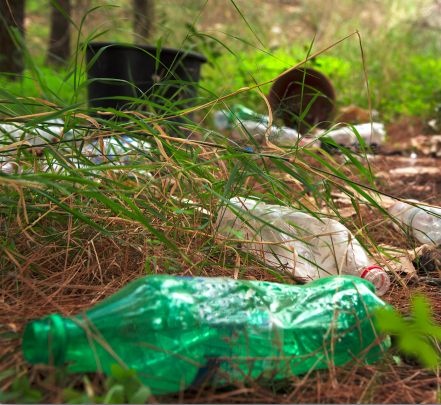 Mission - With more pollution in our forests and oceans than ever before, it's time to take action. This initiative is not a one-time event, but a way of life. A call for a collective effort to clean up nature now, and keep her clean forever.