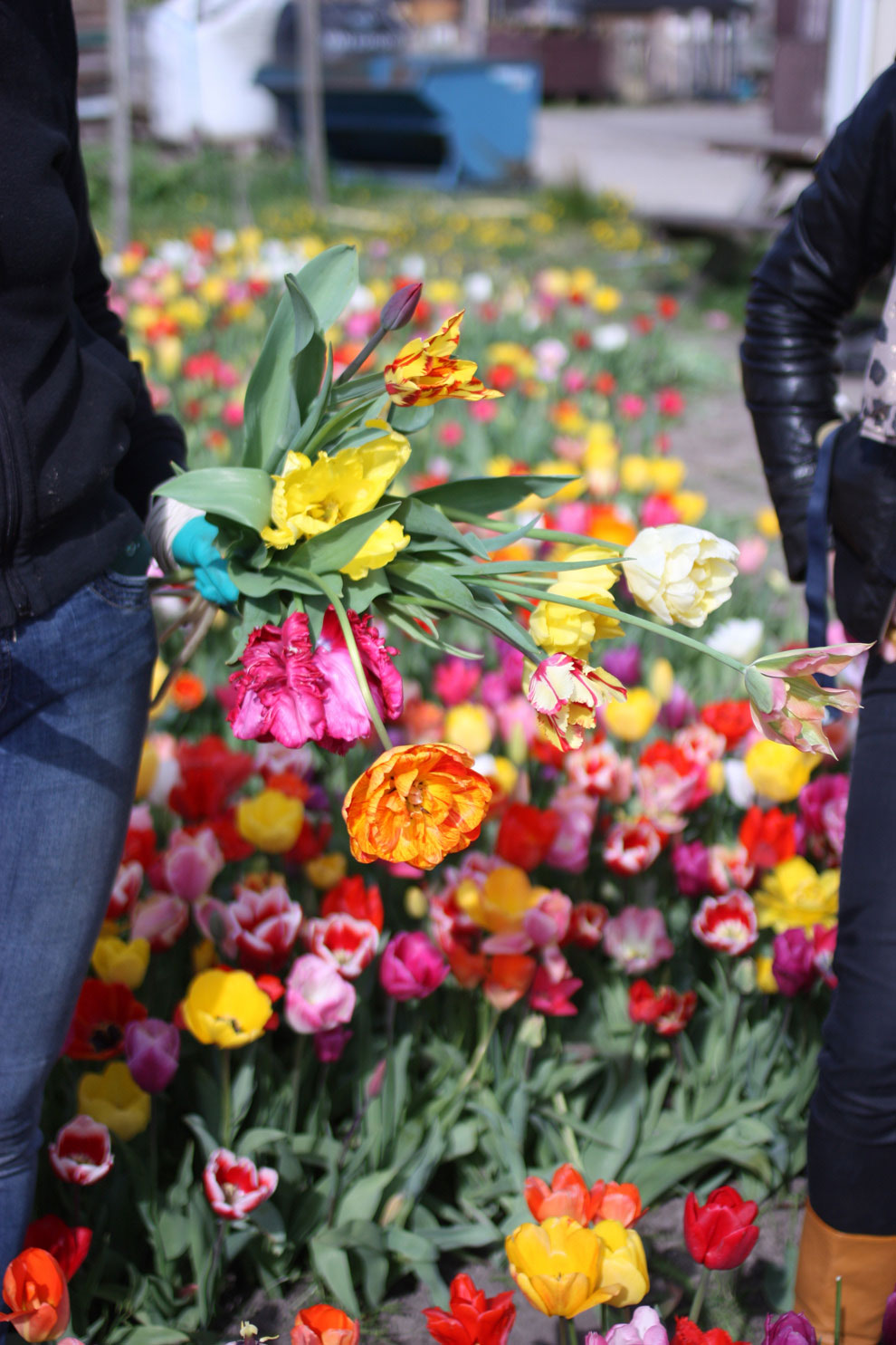 Keukenhof14_bouquet.jpg