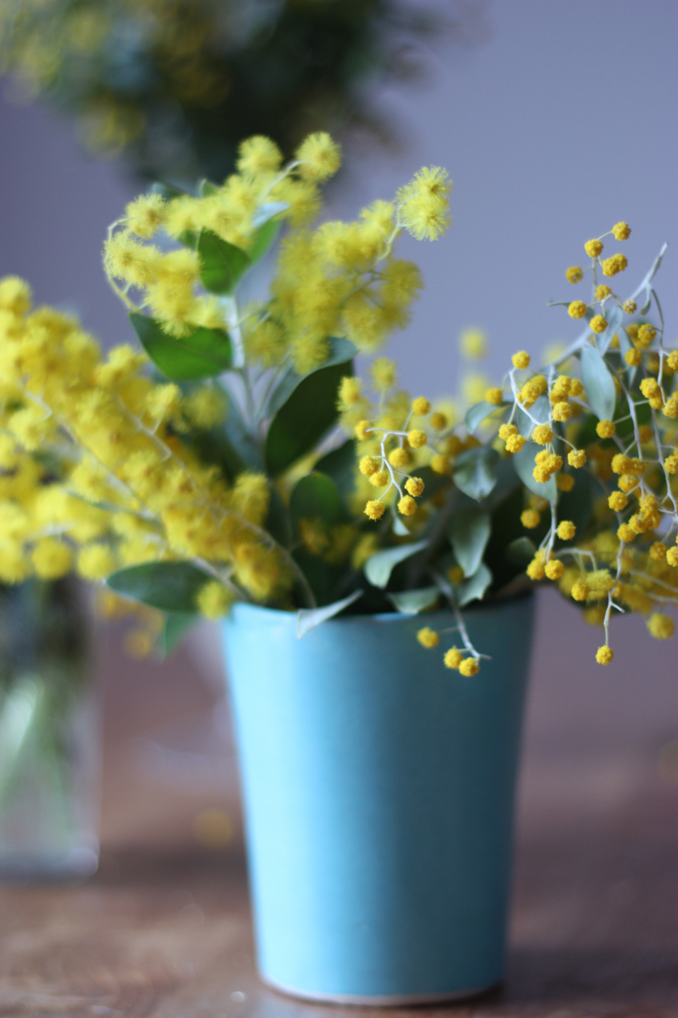 mimosa-in-blue-vase