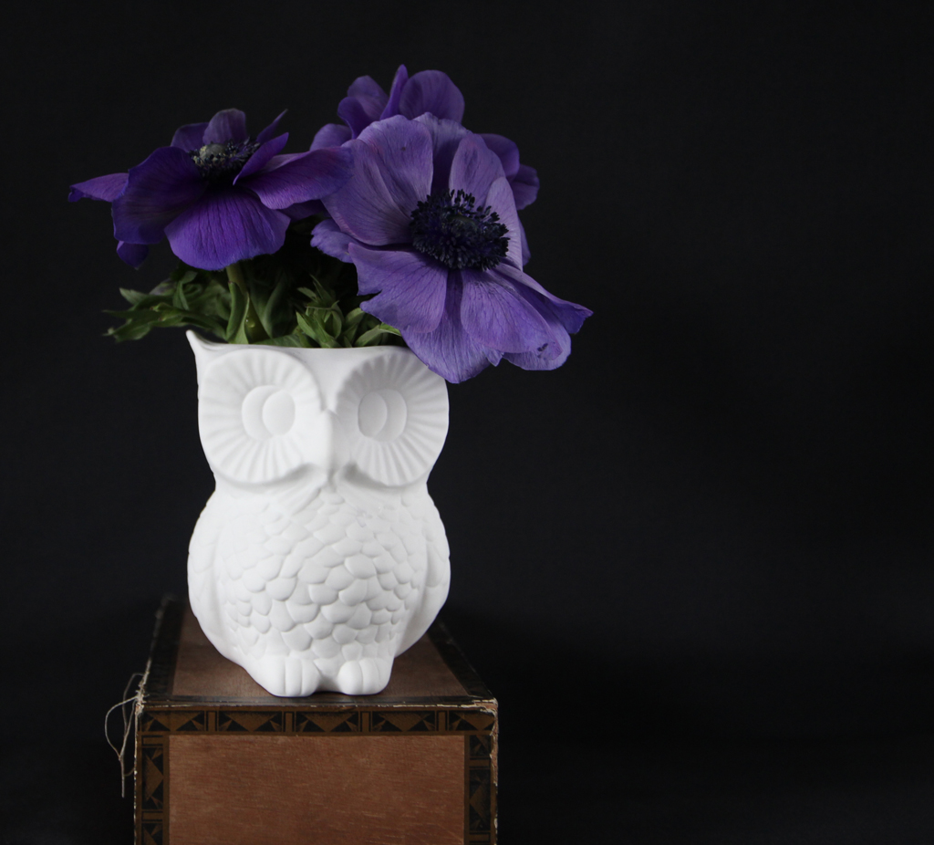 2 flower girls - anemones and owl