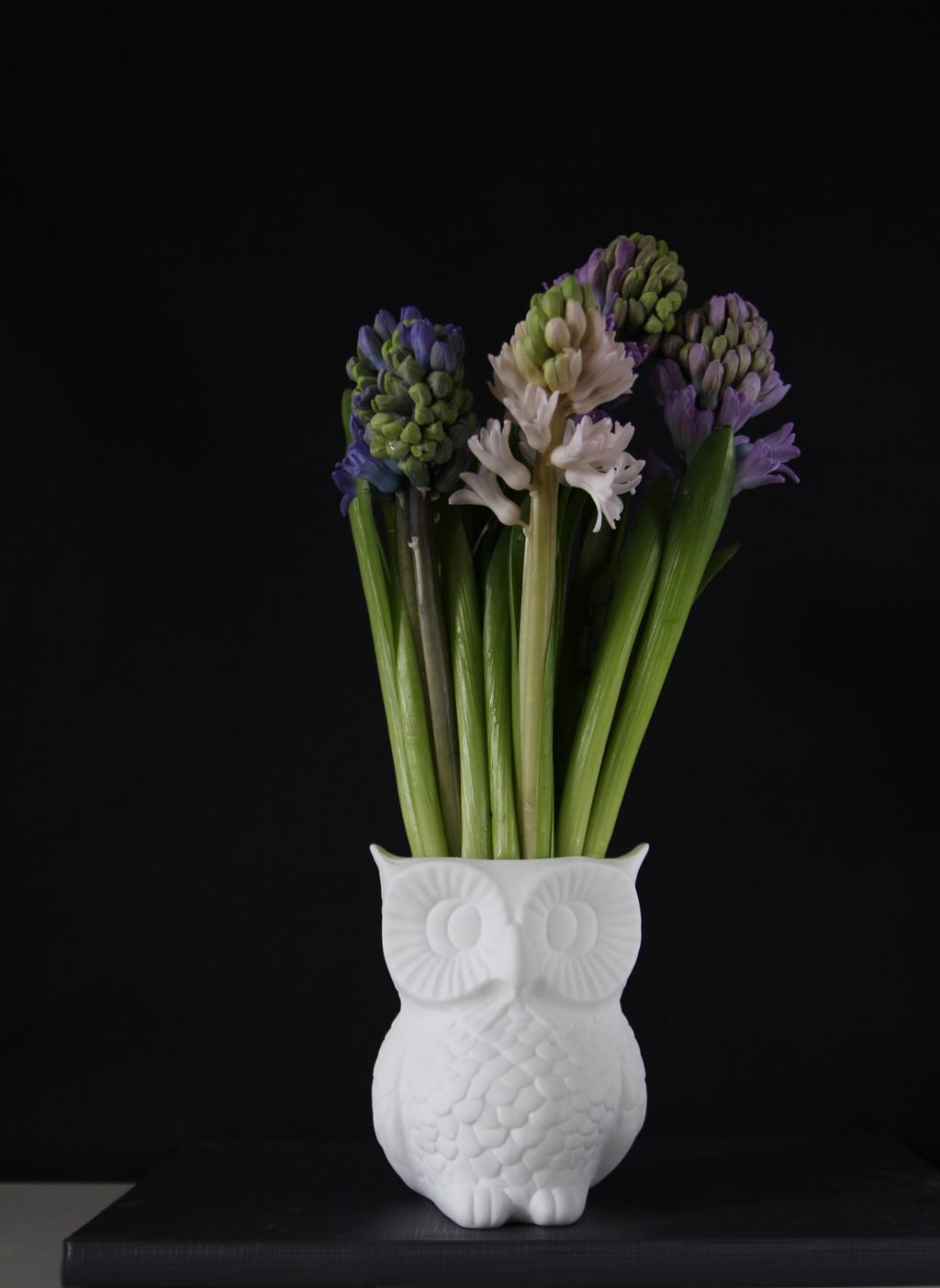 2 flower girls - owl vase and yacinths