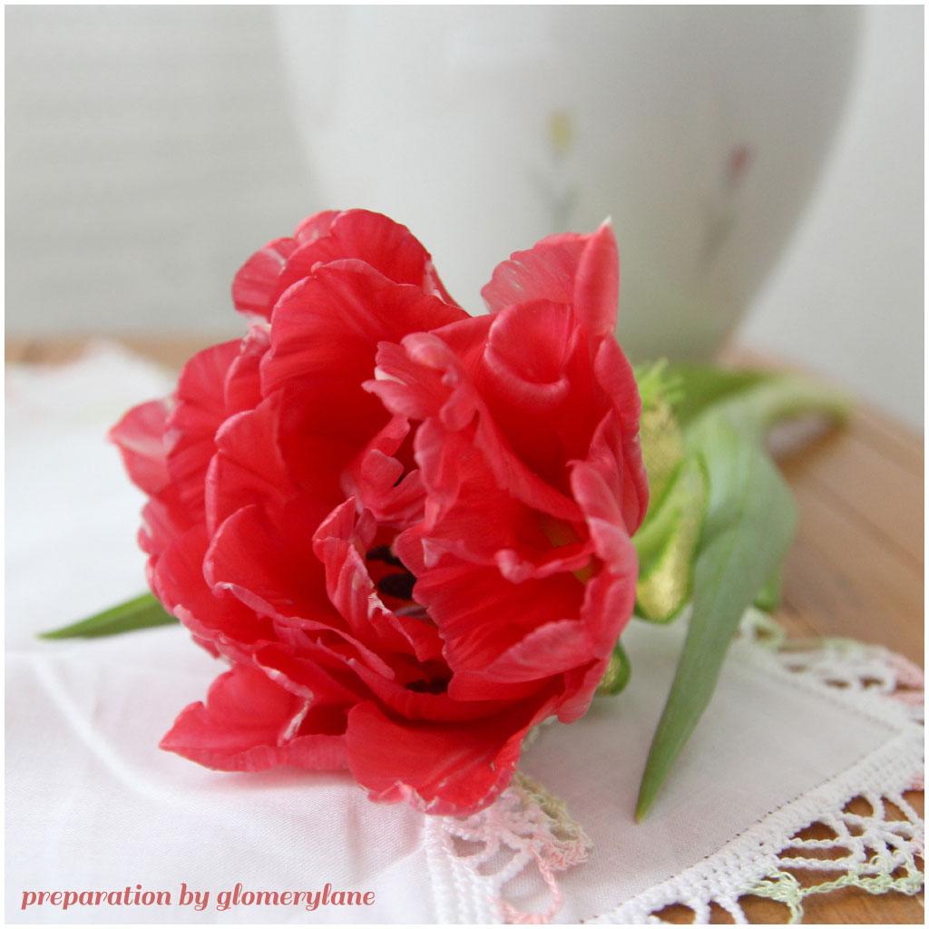 2 flower girls - preparation-by-glomerylane