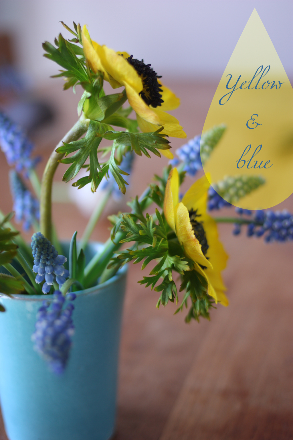 Yellow_and_blue_flowers