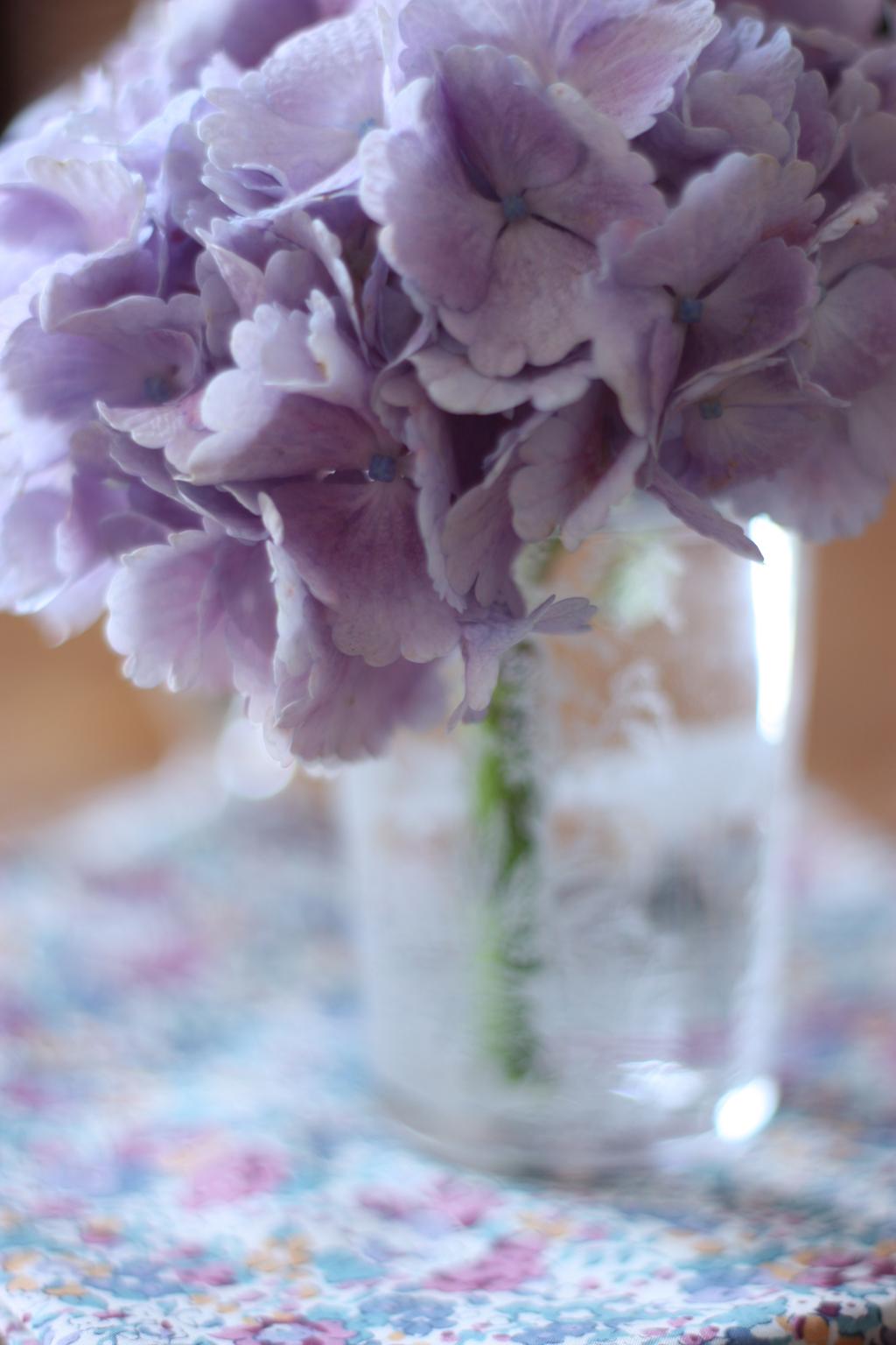 2flowergirls-hortensia1